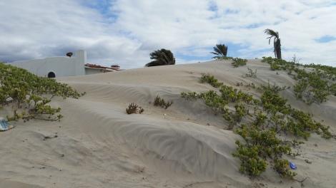 Houses built on dunes in Estero- Southern Ensenada Bay.